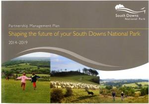 SDNPA 5yr plan